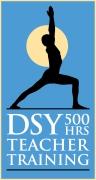 DSY-TTlogo16