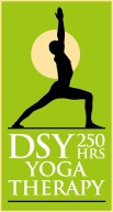 DSY-YT16250